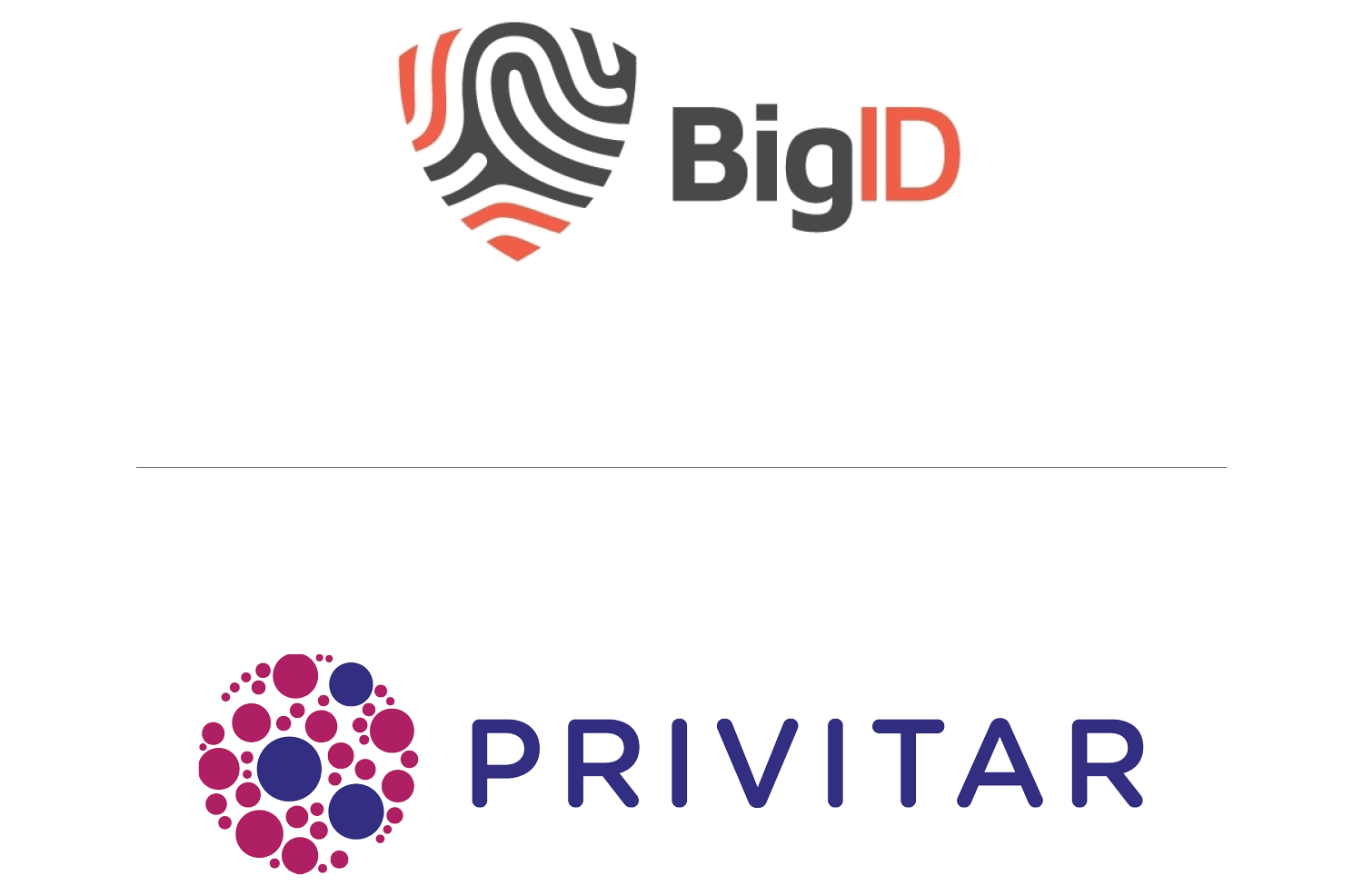 Privitar and BigID enable enterprises to leverage their data safely and at great speed
